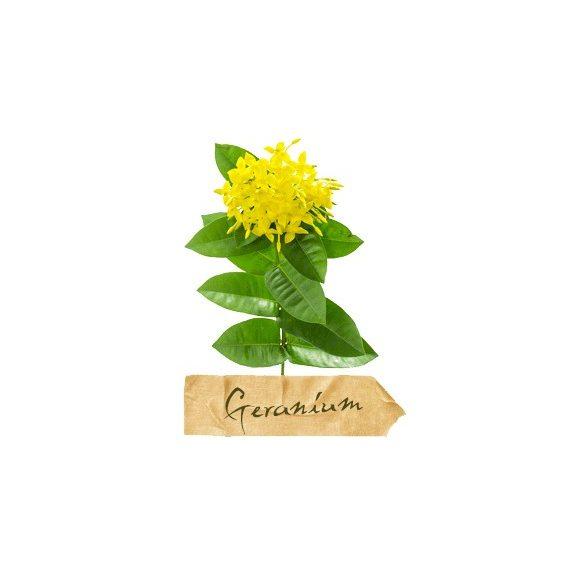 Faith in Nature - Levendula és geránium sampon